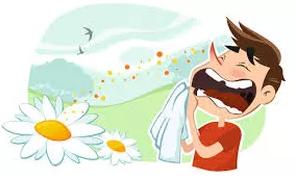 Seasonal Allergies - Ritual Medicine